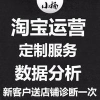 淘宝代运营京东方案制定服务拼多多店铺装修策划分析活动流量设计