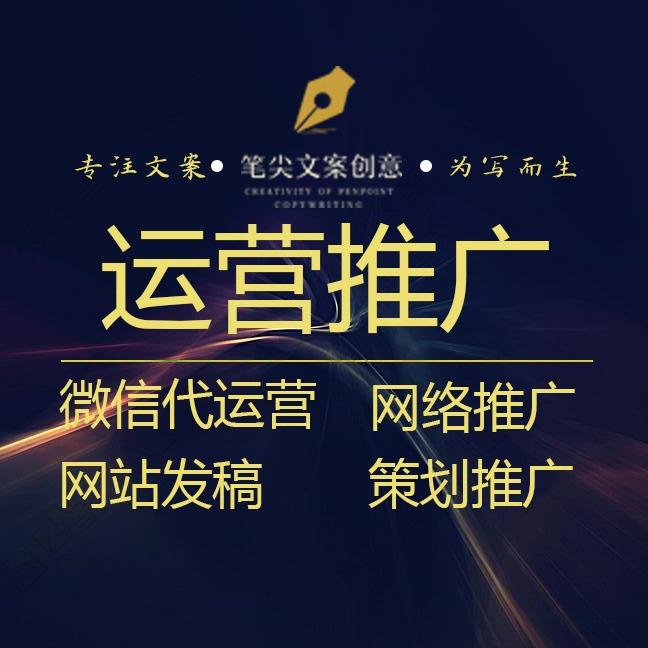 微信代运营 文章推广 网站推广 网络发布 抖音代运营
