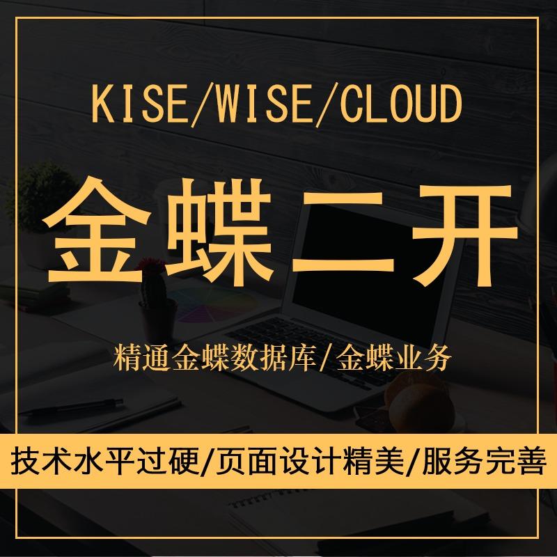 金蝶二次开发/rise/wise/cloud/对接/技术支持