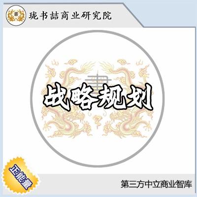 【珑书喆】战略规划/前瞻性/格局高度/资源匹配/落地/执行