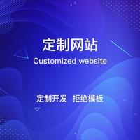 网站定制 定制网站