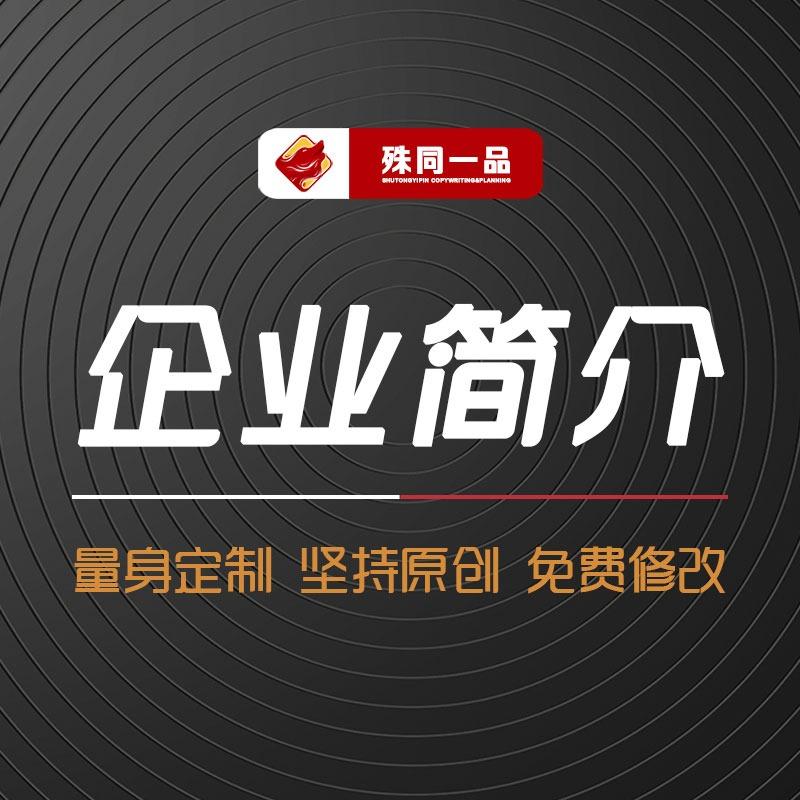 企业公司品牌简介绍品牌故事品牌文化全案策划宣传手册PPT策划