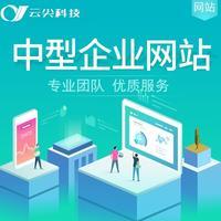中型企业网站网站开发定制网站建设商城分销重庆网站定制成品