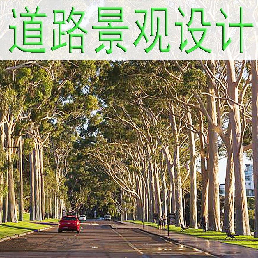 道路 / 景观大道 / 市政景观 设计