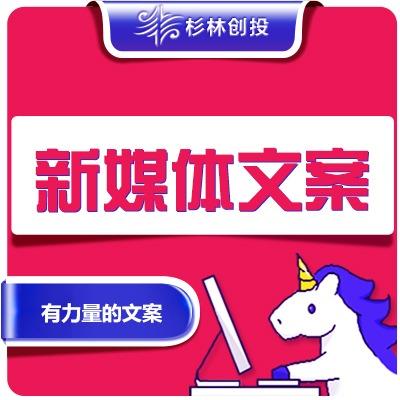 淘宝天猫京东苏宁拼多多全网店电商新媒体文案专业拟定销售广告语