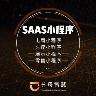 SaaS小程序开发-定制小程序-电商小程序-微信公众号开发