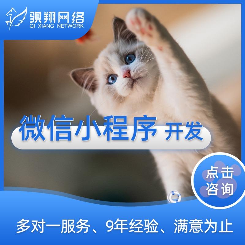 微信小程序-微信营销-企业官网-app-网站-商城