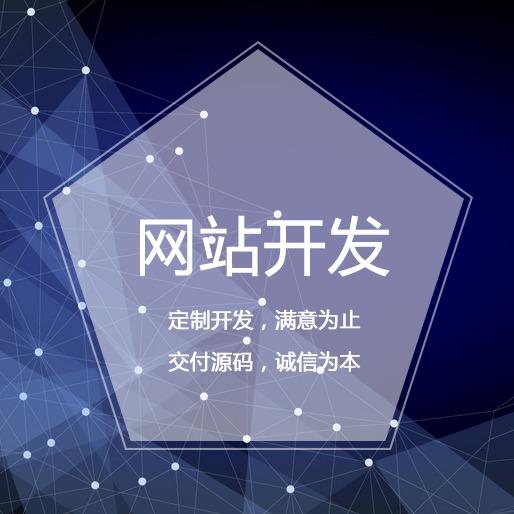 网站开发 电商网站 社交 电商平台 跨境电商 电商采购