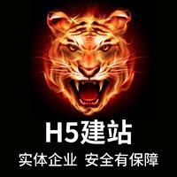 网站建设公司企业官网制作电商网站开发手机网站H5定制网页商城