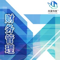 财务管理软件 生产管理 车间管理 管理系统erp风雷科技