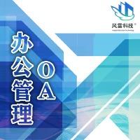 OA办公软件开发 生产管理 企业管理 管理系统erp风雷科技