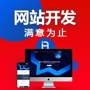 商城网站/门户网站/手机网站/网站+企业管理系统/