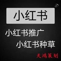 红书发布品牌文案美妆生活推广营销互动素人kol红人产品宣传