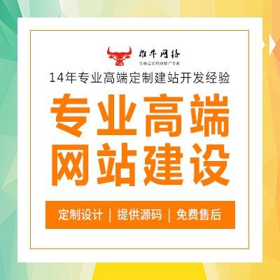 上海营销型网站建设 网站开发 网页设计100+人团队