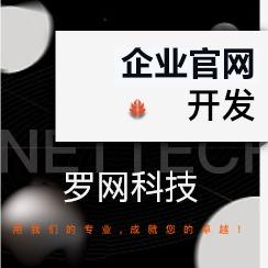 【罗网网站建设】网站开发企业公司官网设计响应式PC移动多语言