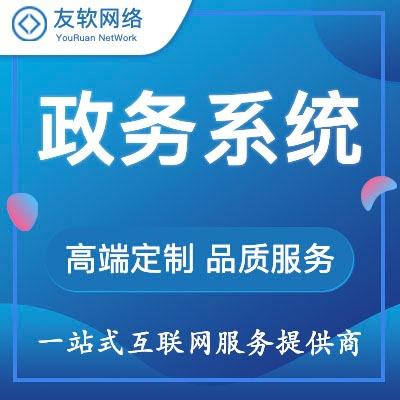 网站 开发 网站建设政务系统社保医保税务市场教育民政户籍系统网站