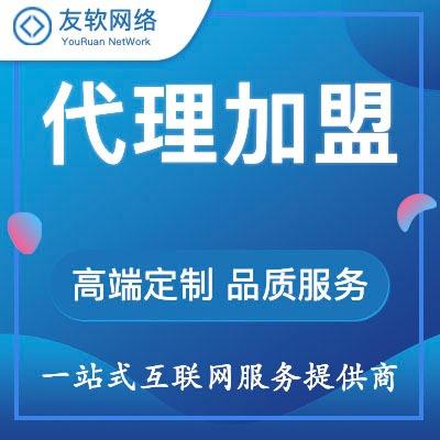 代理加盟网站建设网站开发网页制作定制开发设计