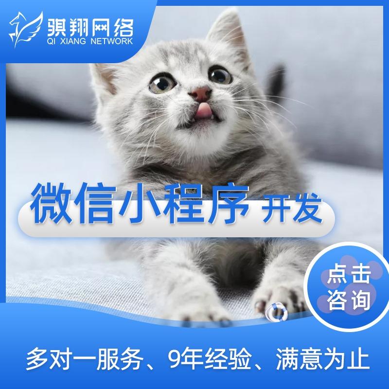 国外贸中英文小程序多语言APP网站设计开发