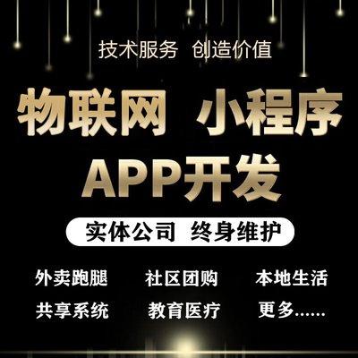 APP开发 小程序 软件定制  企业软件 网站建设 营销网站