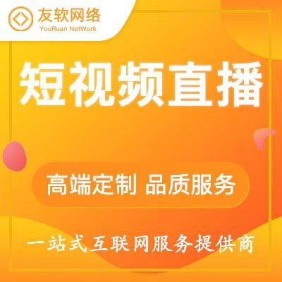 段视频直播 网站二次开发 建设 网站 web 网站  开发 H5 网站 小程序