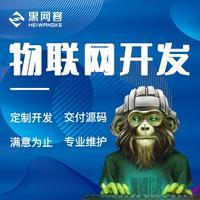 软件开发物联网软件硬件定制智能工业控制嵌入式智慧工具制作公司