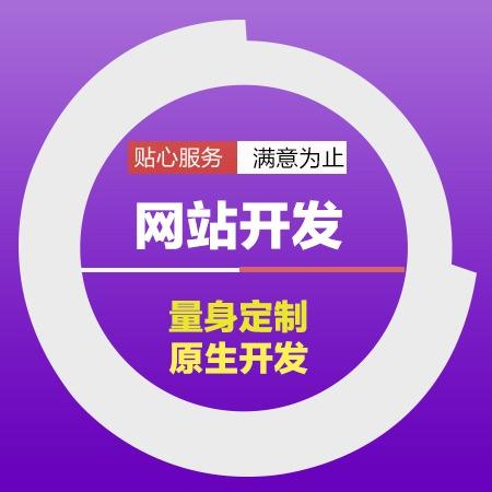 【源码交付】高端企业官网网站定制开发模版仿站建站公司网站建设