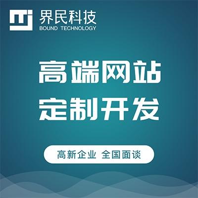 【高端网站定制】网站建设网站开发 品牌定制 公司形象网站 
