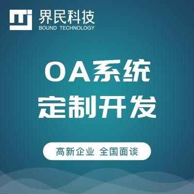 软件开发 系统定制 OA SAAS ERP CRM 功能开发