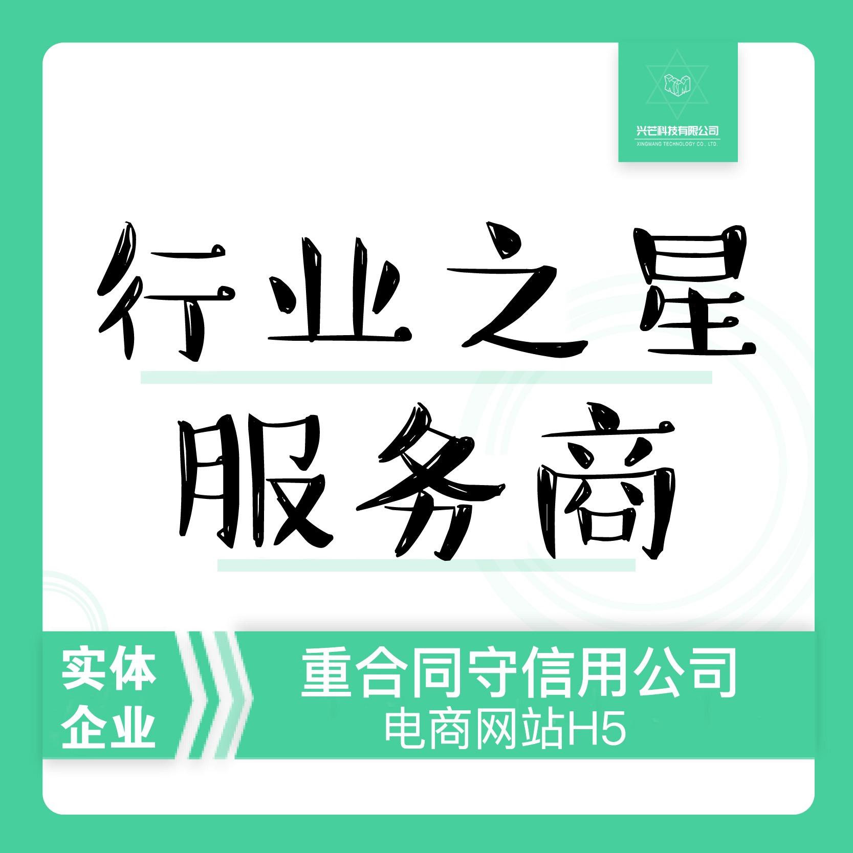 电商网站二次开发/广州深圳北京上海天津武汉合肥苏州长沙南宁