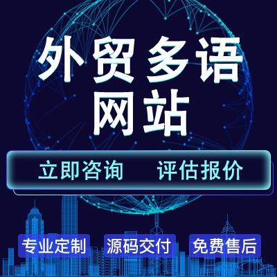 外贸 网站 /中英文版/多语言版/境外 定制  网站 建设 开发 制作设计