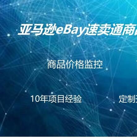 亚马逊eBay速卖通wish虾皮跨境电商商品价格监控监测系统