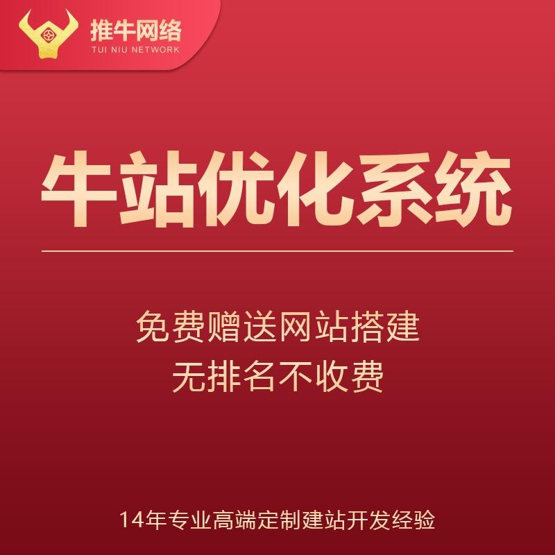 网站seo关键词优化百度排名 免费送网站建设  牛站优化系统