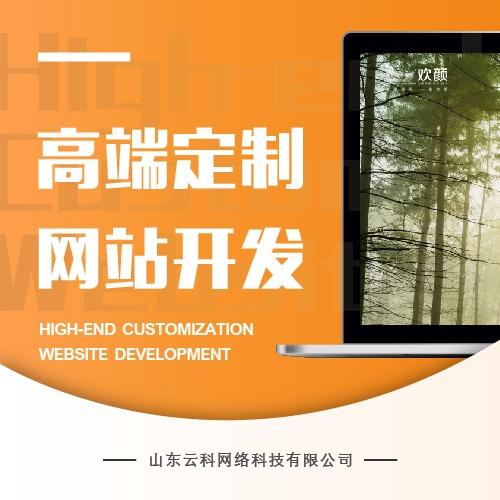 【一条龙服务】高端定制企业网站官方设计/终身免费维护提供源码