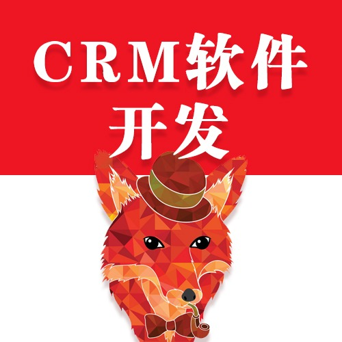 CRM系统 系统开发 办公软件 app开发 内部软件开发