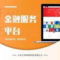 金融手机网站公司企业网站网页定制设计开发制作建设前端后台改版