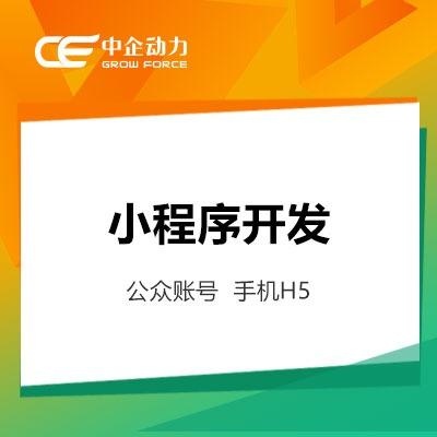 优惠券类微信支付宝小程序微信公众号网站开发app开发