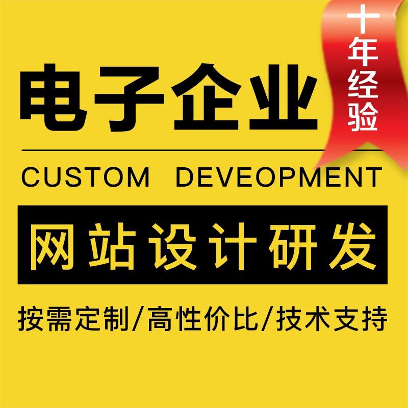 电子公司企业 网站 设计 开发  网站 建设