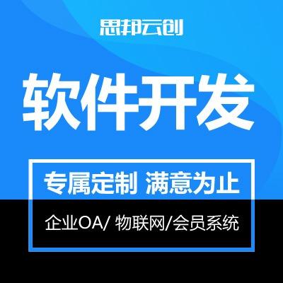软件定制开发 企业OA管理系统物联网监控数据采集平台会员系统