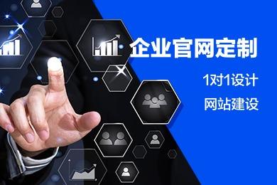 云定制企业挂网制作 1对1设计网站建设 展示型网站