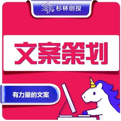 餐饮行业休闲娱乐公司企业新品牌整合品牌全案写文案策划产品包装