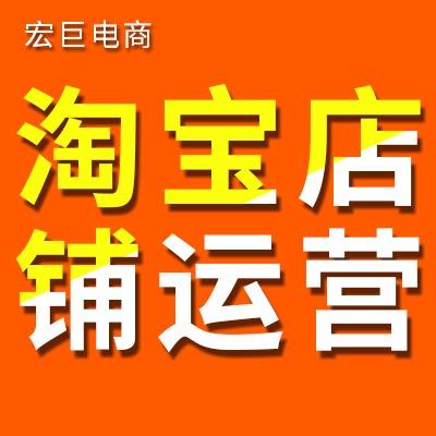 宏巨电商淘宝代运营天猫京东代入驻拼多多代运营直通车钻展托管