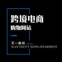企业公司网站建设模板建设电商模板网站商城网站建设购物网站开发