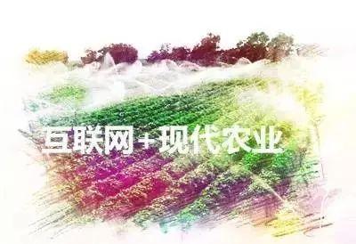 澳门新葡京娱乐4996g.com