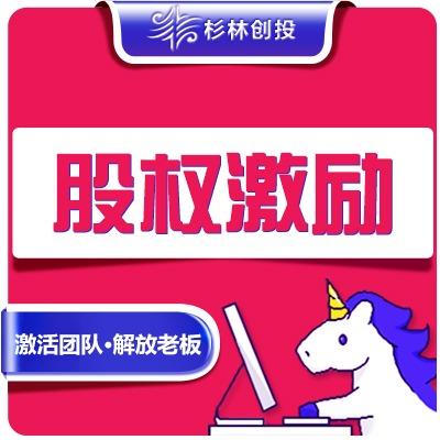 公司架构分红权控制权设计股权布局管理合伙人制度编制起草协议书