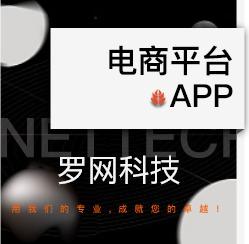 APP开发/安卓开发/iOS开发/手机软件开发