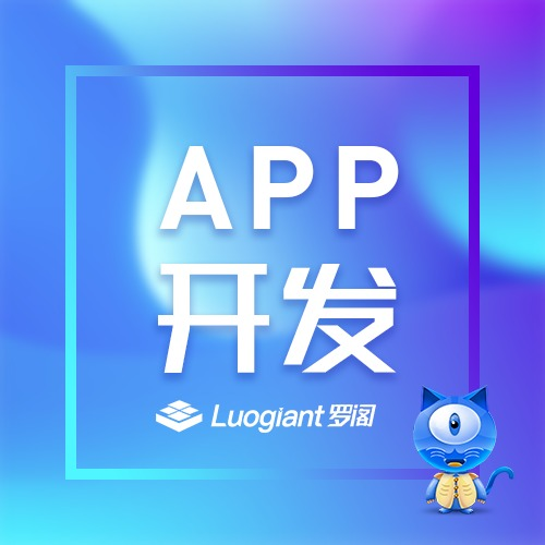 APP开发 APP定制 APP开发设计 软件开发 软件定制