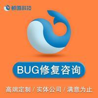 模版网站/定制网站/BUG咨询修复/网站小程序服务器部署