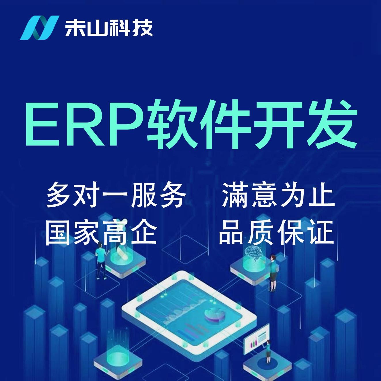 ERP软件/ERP对接/招标投标/南网供应链/金蝶用友二开