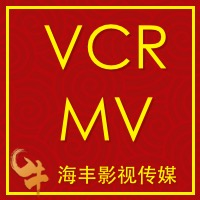 MV/VCR团队展示婚纱照照片周岁MV照片视频个人展示