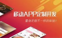 app开发/小程序开发/H5开发/商城系统/网站开发